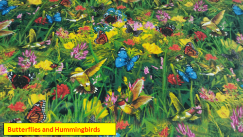 Butterflies and Hummingbirds